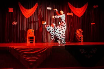 16/11/20-Día del Flamenco